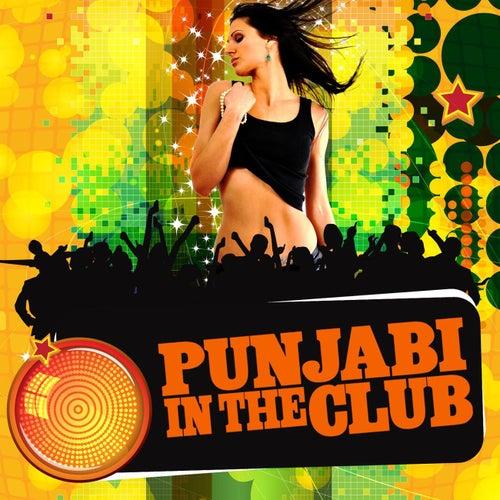 Punjabi In The Club de Ricky Kej