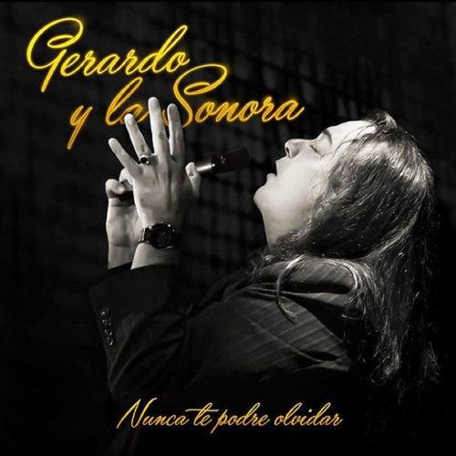 Nunca Te Podre Olvidar by Gerardo y La Sonora