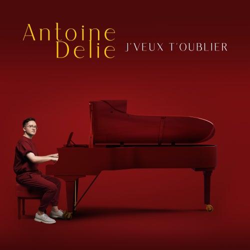 J'veux t'oublier by Antoine Delie