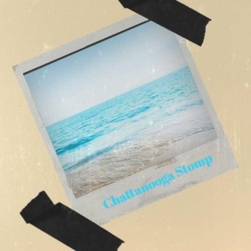 Chattanooga Stomp de Various Artists