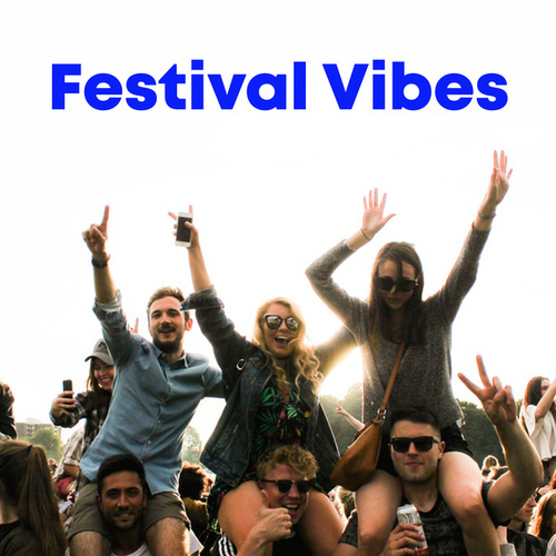 Festival Vibes by Various Artists