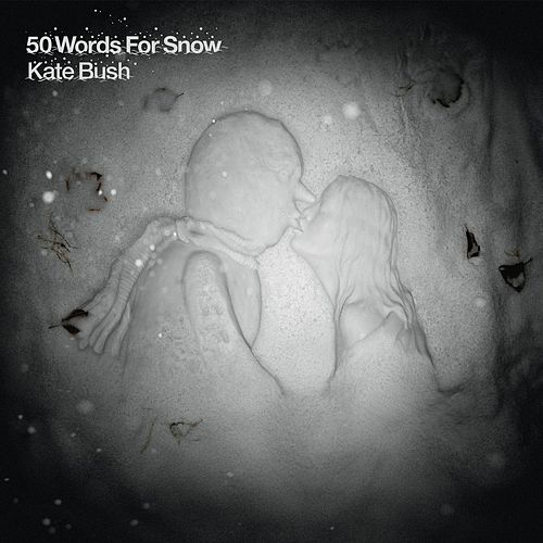 50 Words for Snow von Kate Bush
