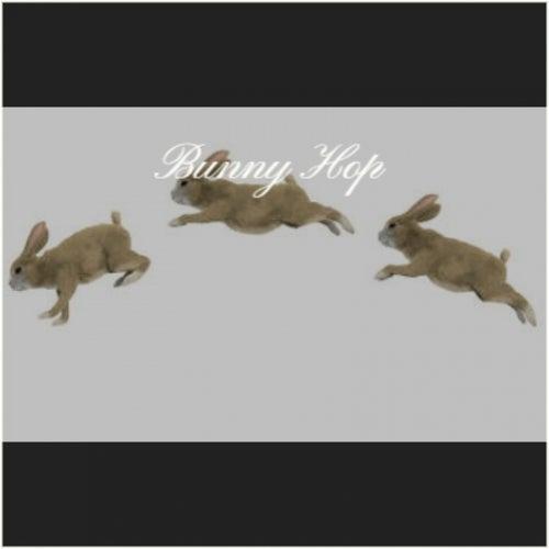 Bunny Hop fra Various Artists