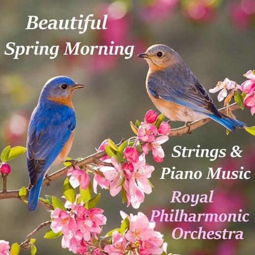 Beautiful Spring Morning Strings & Piano Music Music by Arthur Rodzinski