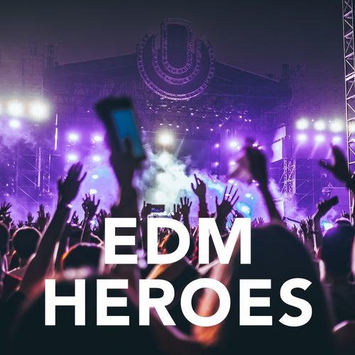 EDM Heroes von Various Artists