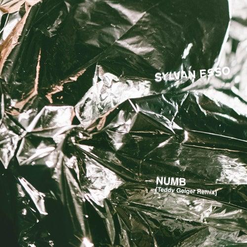 Numb (Teddy Geiger Remix) von Sylvan Esso