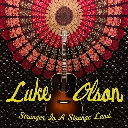 Stranger in a Strange Land de Luke Olson