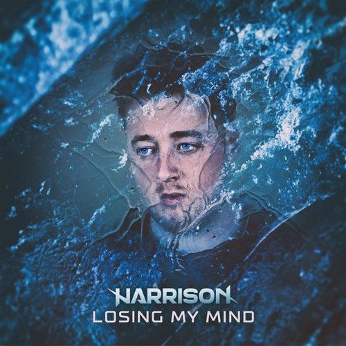 Losing My Mind by Harrison