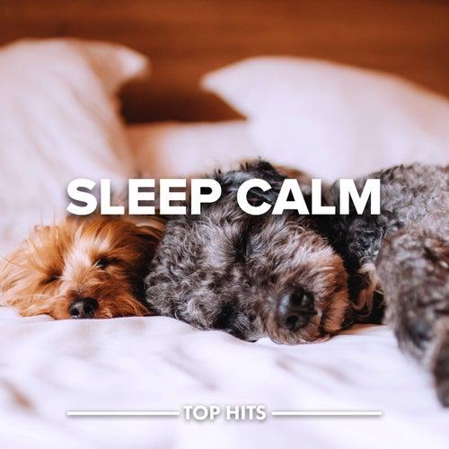 Sleep Calm by Various Artists