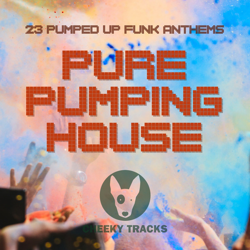 Pure Pumping House by Various Artists