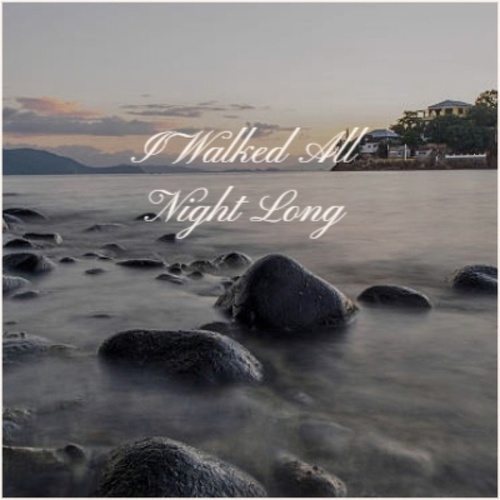 I Walked All Night Long by Various Artists