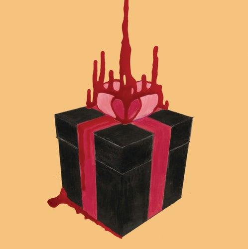 Box Of Secrets von Blood Red Shoes