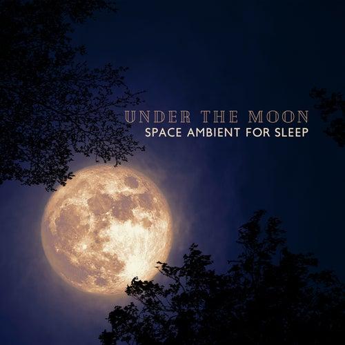 Under the Moon (Space Ambient for Deep & Restorative Sleep, Meditation before Bedtime, Sleep Aid Music) by Deep Sleep Music Academy