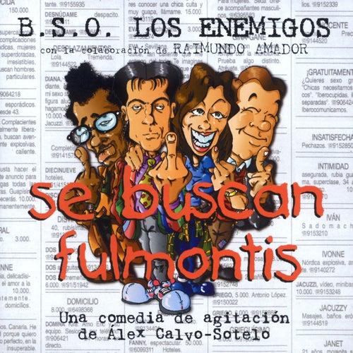 Se Buscan Fulmontis von Los Enemigos