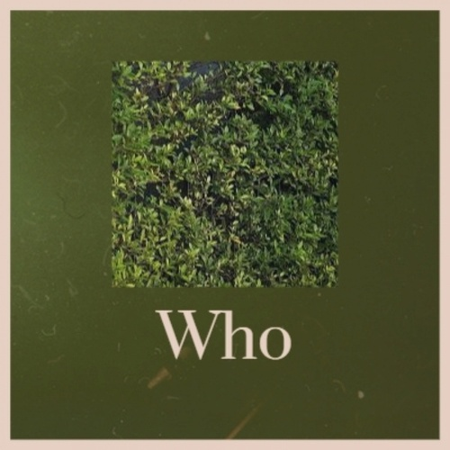 Who fra Various Artists