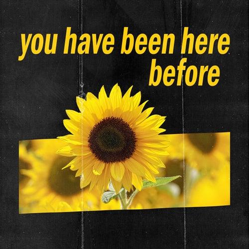 you have been here before de Alfie