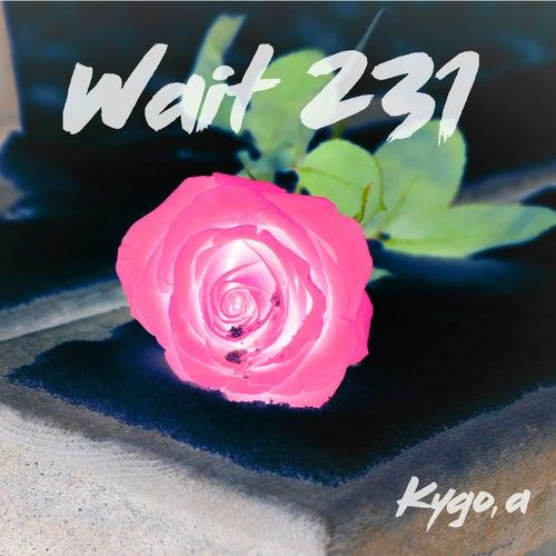 Wait 231 by Kygo
