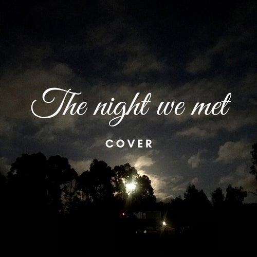 The Night We Met (Cover) de Ana Francisca Sampaio Novais