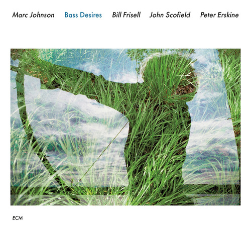 Bass Desires von Marc Johnson