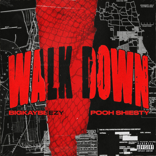 Walk Down (feat. Pooh Shiesty) by Bigkaybeezy