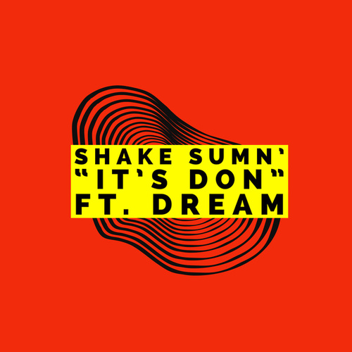 Shake Sumn' by 'It's DON'