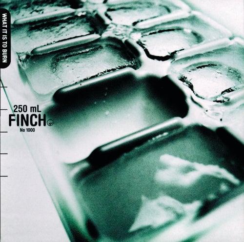 What It Is To Burn de Finch