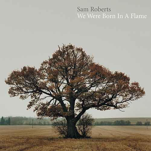 We Were Born In A Flame de Sam Roberts