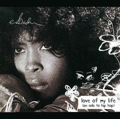 Love Of My Life (Ode To Hip Hop) von Erykah Badu