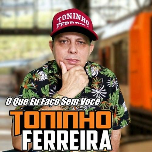 O Que Eu Faço Sem Você by Toninho Ferreira