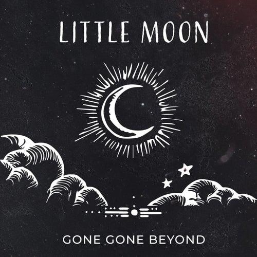 Little Moon by Gone Gone Beyond
