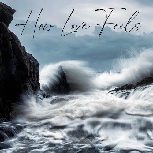 How Love Feels de Various Artists