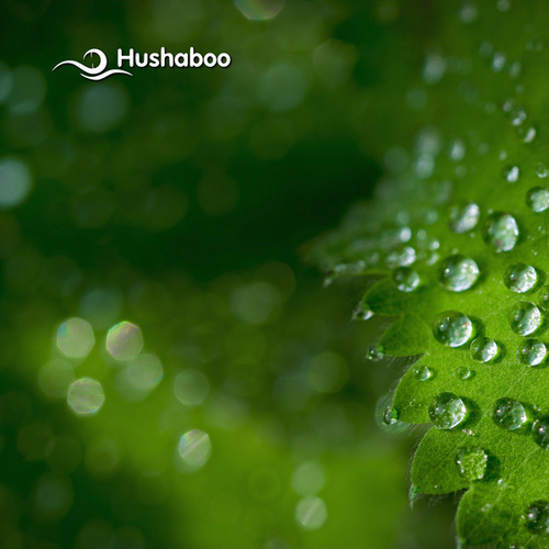 Crickets in Night Rain by Hushaboo