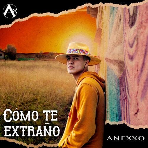 Cómo Te Extraño by Grupo Anexxo