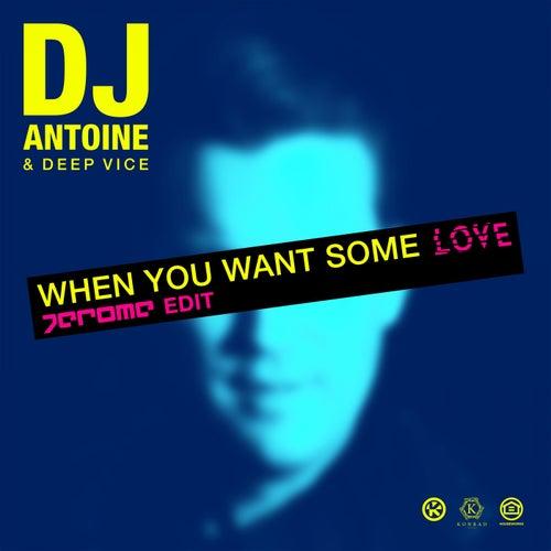 When You Want Some Love (Jerome Edit) von DJ Antoine