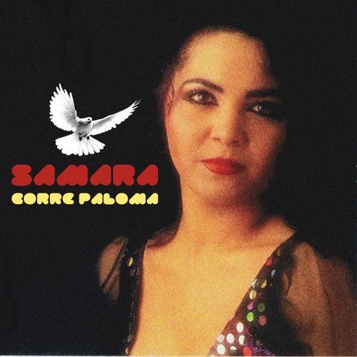 Corre Paloma de Samara