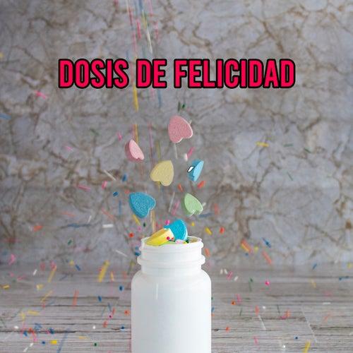 Dosis de Felicidad by Various Artists