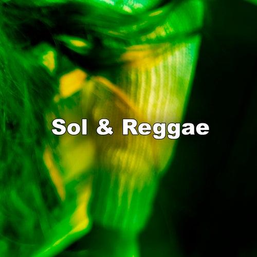 Sol & Reggae by Various Artists