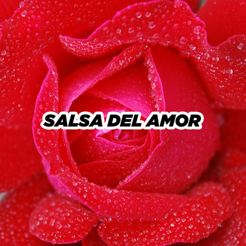 Salsa del amor by Various Artists