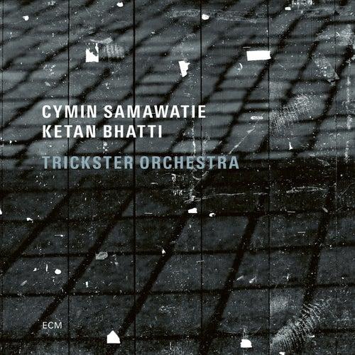 Gebete by Cymin Samawatie