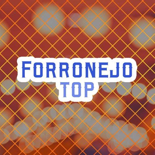 Forronejo Top von Various Artists