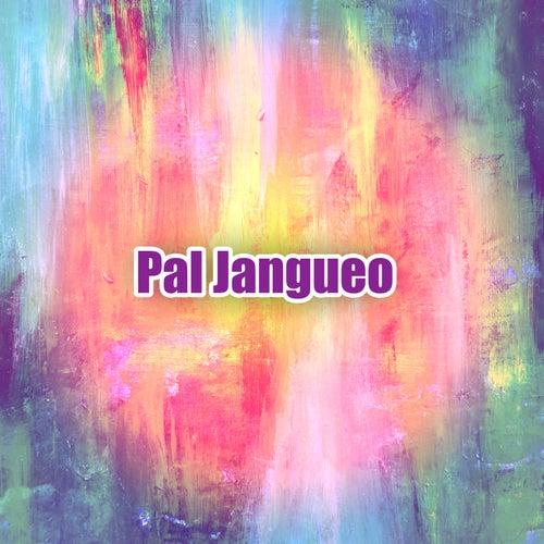 Pal Jangueo de Various Artists
