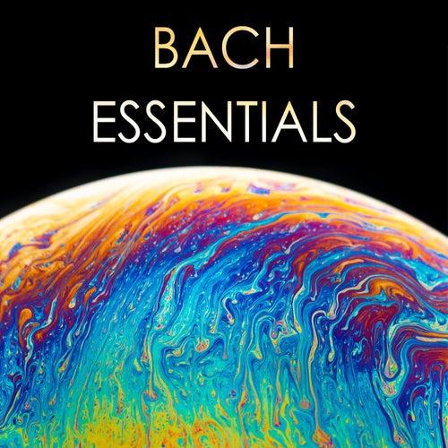 Bach - Essentials von Johann Sebastian Bach
