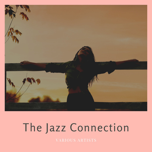The Jazz Connection von Various Artists
