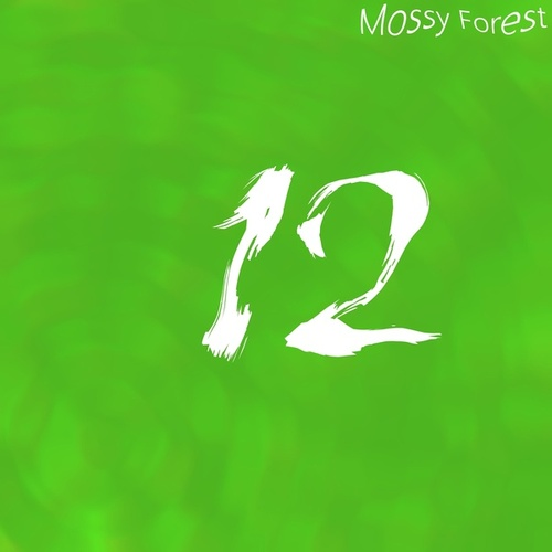 12 by Mossy Forest