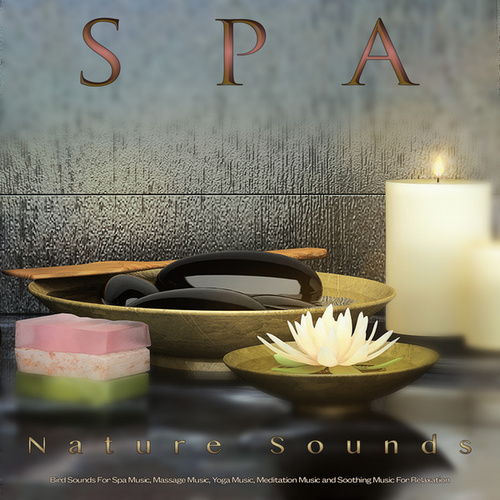 Spa: Piano and Nature Sounds and Bird Sounds For Spa Music, Massage Music, Yoga Music, Meditation Music and Soothing Music For Relaxation by S.P.A