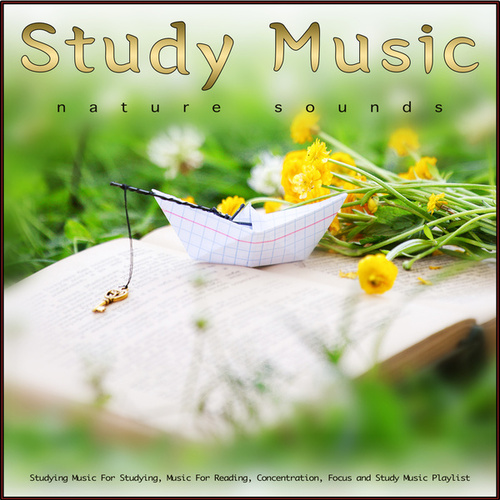 Study Music: Studying Music and Nature Sounds For Studying, Music For Reading, Concentration, Focus and Study Music Playlist de Study Music