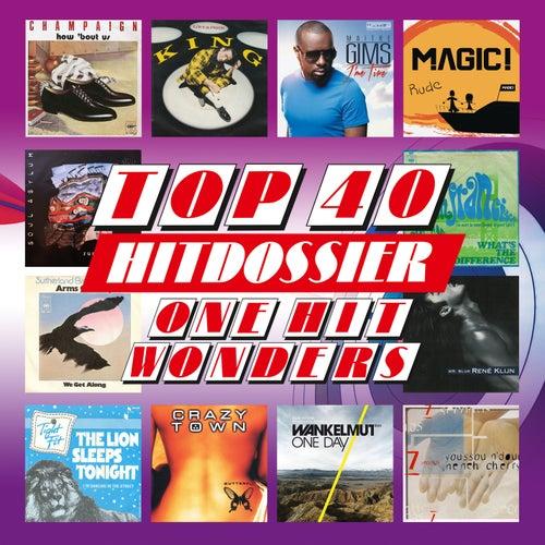 TOP 40 HITDOSSIER - One Hit Wonders (Eendagsvliegen Top 100) de Various Artists