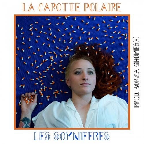 Les somnifères by La Carotte Polaire