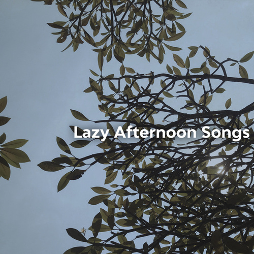 Lazy Afternoon Songs de Various Artists