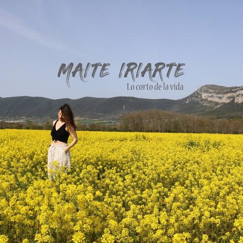 Lo Corto de la Vida by Maite Iriarte
